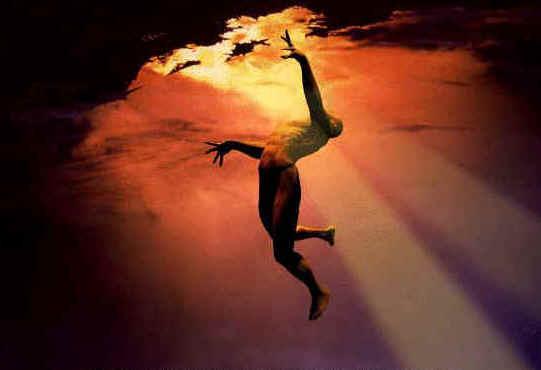 «Ma per rinascere, bisogna imparare a 'tramontare'. Per nascere, occorre rinascere.» (di Emanuele Casale)