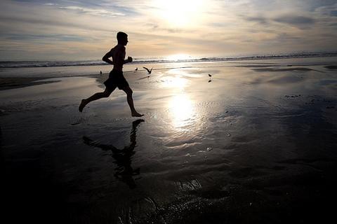 Pillole Letterarie: Correre, volare, andare, per vivere.(Nietzsche; R.Bach; A.Jodorowsky; L.Da Vinci)