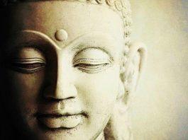 Buddha Credere Gautama Siddharta