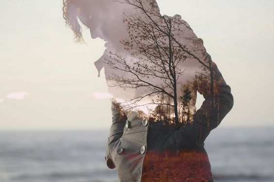 """●₪ مــــــزاجك """"بصـــــورة"""" ₪● - صفحة 99 Mondo-interiore-natura-alberi"""