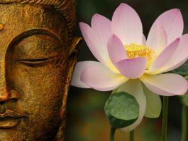Buddha Meditazione Loto