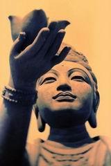 Loto Buddha Meditazione