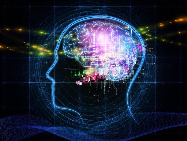 Cervello non locale