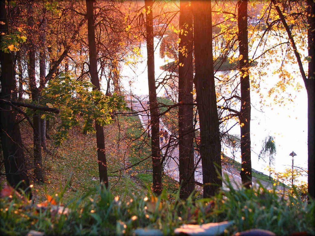 autumn autunno