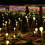 Bruce Munro - Field of light, Uluru, 2016
