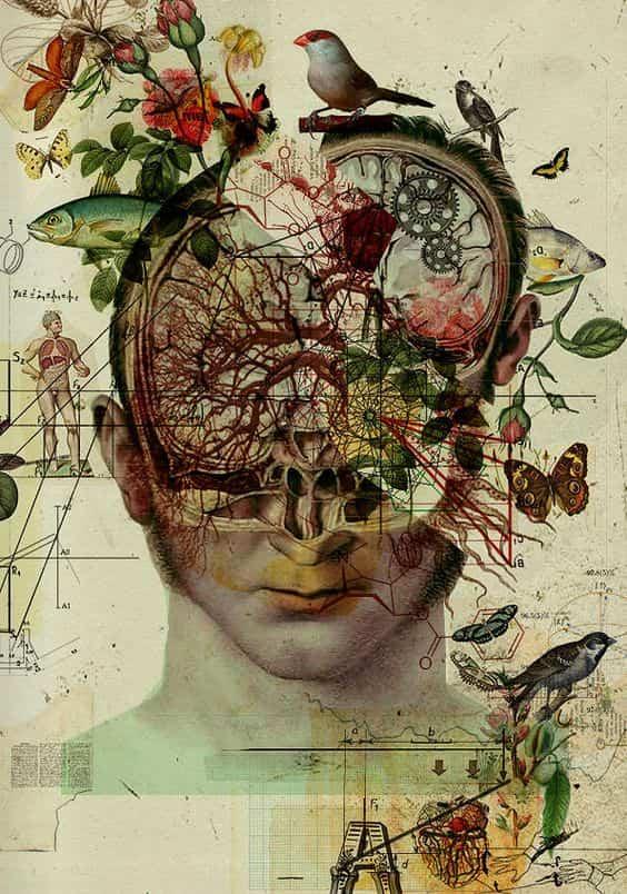 Cervello Psiche