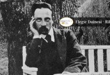 Le meravigliose Elegie Duinesi del poeta Rilke_ opera eterna della letteratura copertina