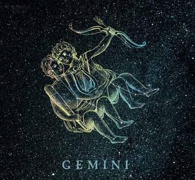 Gemelli Gemini Segni Zodiacali 3