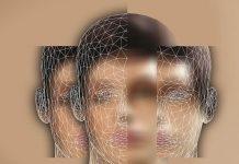 Percezione Visiva Cervello Mente Gerd Altmann