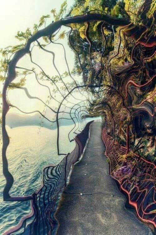 Sogno Psicologia Casa